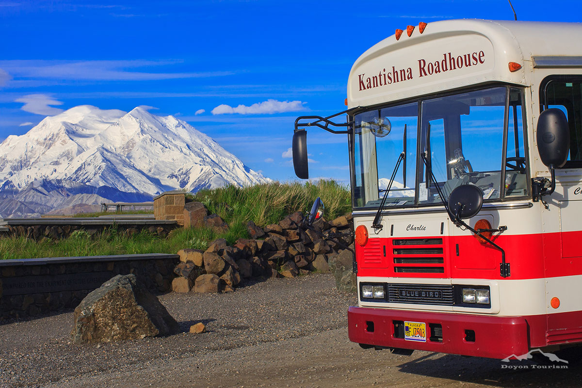 denali-bus-tour