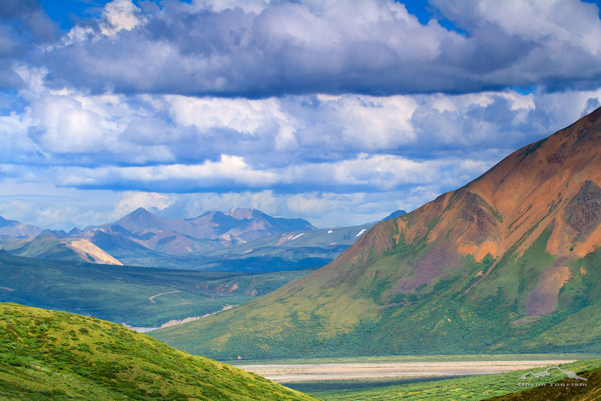 denali-park-valley