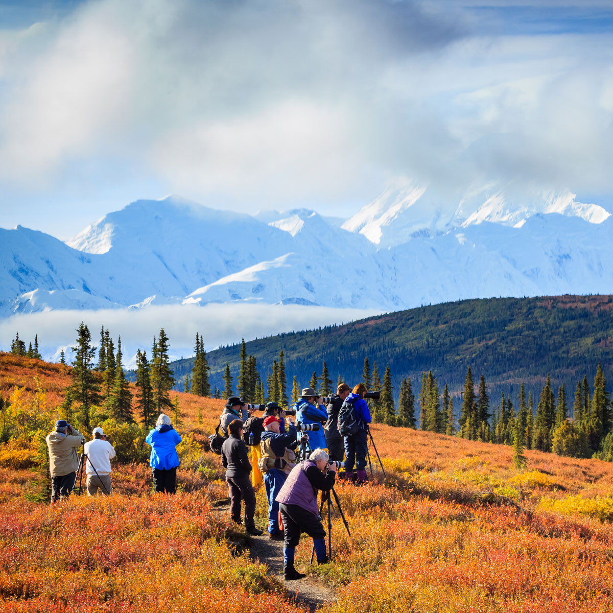 Photographers at Denali
